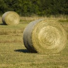 "View ""Hay Bales"""